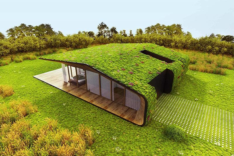 Környezettudatos, zöld tető